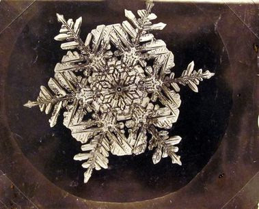 19th century photo pioneer Wilson Bentley's vintage snowfla