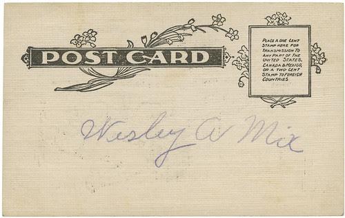 Parrot card bk_tatteredandlost