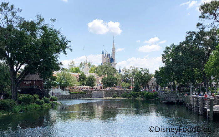 Cinderella Castle Views
