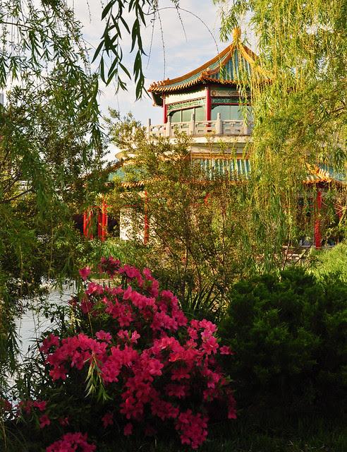Azalea and Pagoda