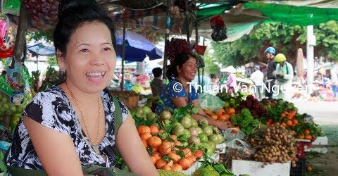 Vietnam || Cai Nhum Rural Market || Vinh Long Province