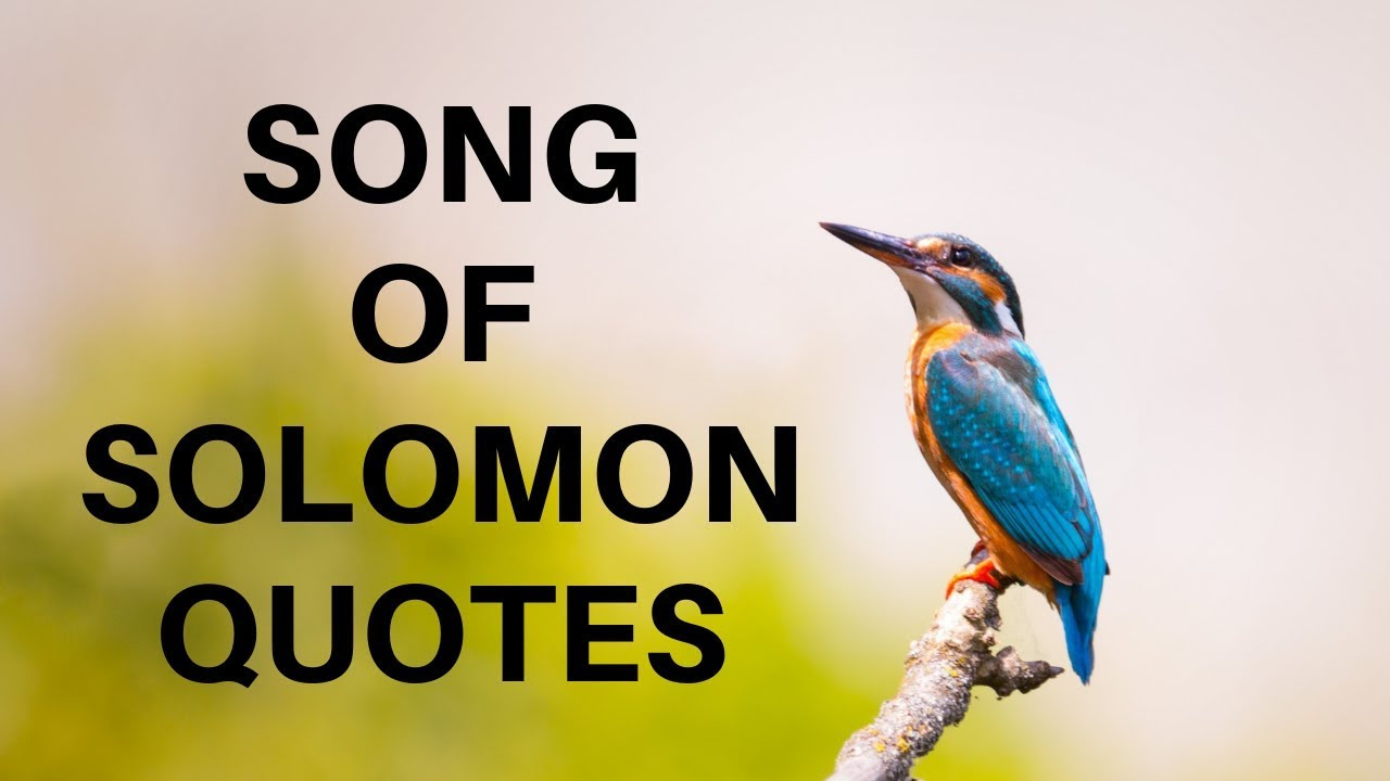 Milkman Song Of Solomon Quotes For Him
