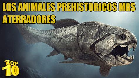 top  los animales prehistoricos mas peligrosos youtube