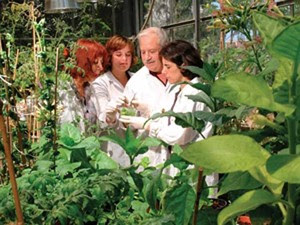 Cientista israelense  Shimon Gepstein desenvolve 'hormônio da juventude' para plantas. (Foto: BBC)