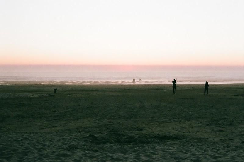 dusk, manzanita