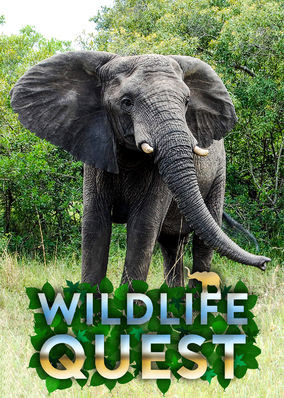 Wildlife Quest - Season 1