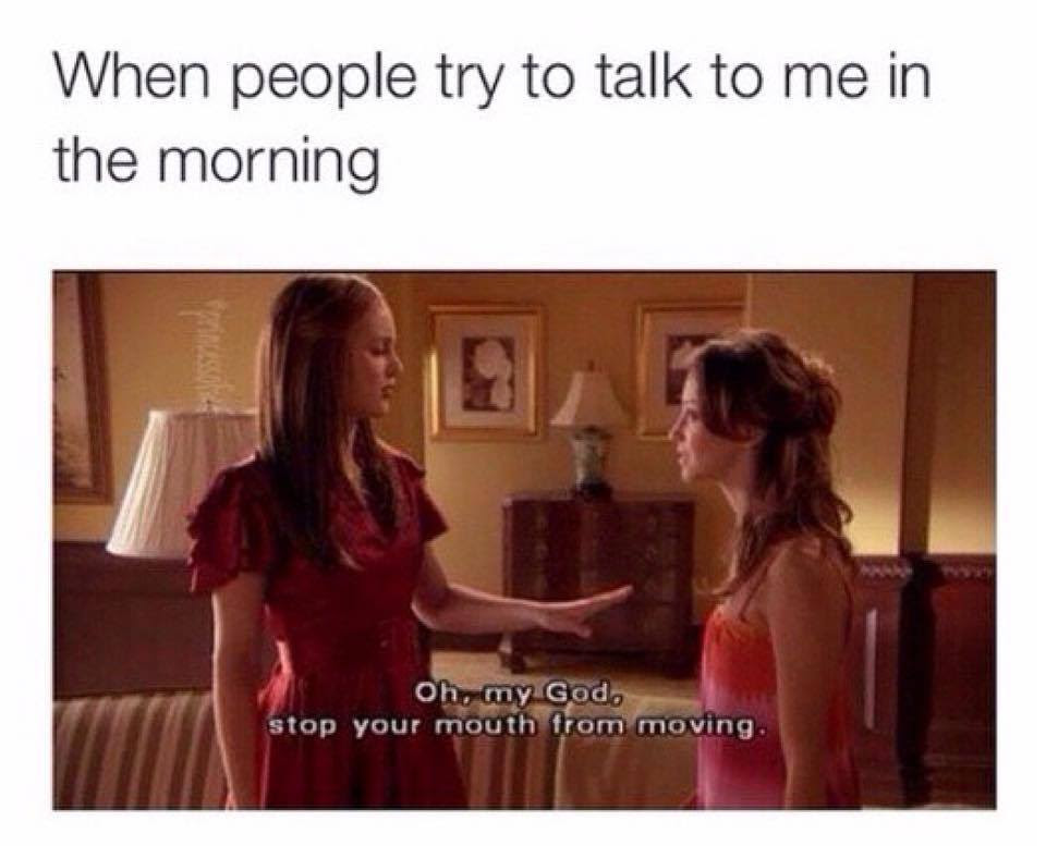 When People Talk To Me In Morning Funny Pictures Quotes Memes