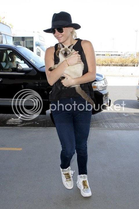 ke$ha adorabile gattara all'aeroporto, confermata per i vma