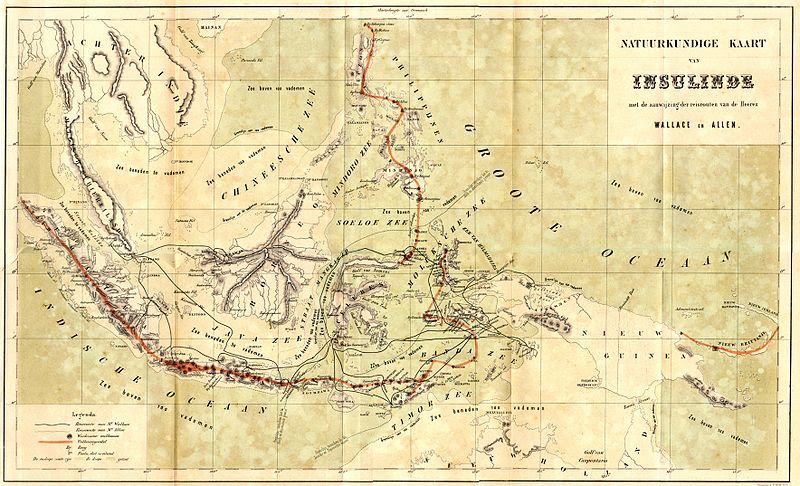 File:Wallace map archipelago.jpg