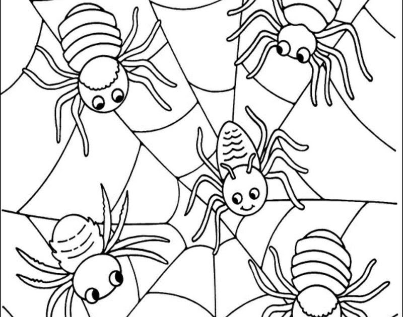 gratis malvorlagen spinnen