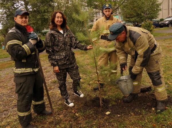 В Новокузнецке стартовала пора посадки саженцев деревьев