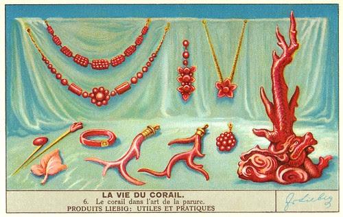 corail 6