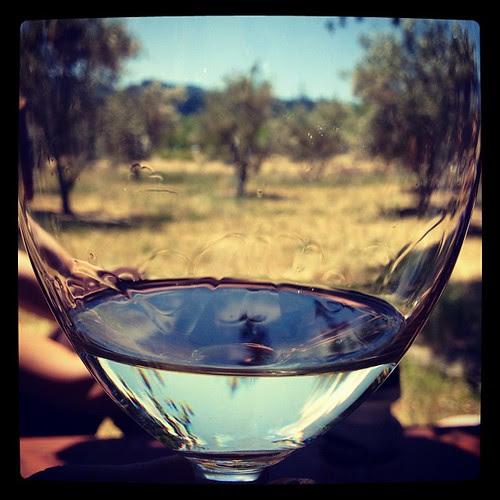 Lava vine wine glass #xproii #napa