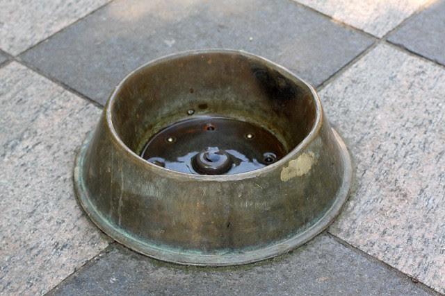 Portland Dog Bowl