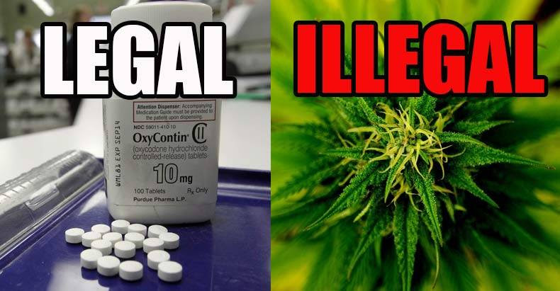 The-Same-Govt-that-Locks-People-in-Jail-for-Pot-Just-Approved-OxyContin-for-11-yo-Children