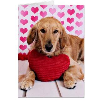 Valentines - Golden Retriever - JJ Greeting Cards