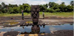 Govt cleanup delay: Genocide against Ogoni people – MOSOP