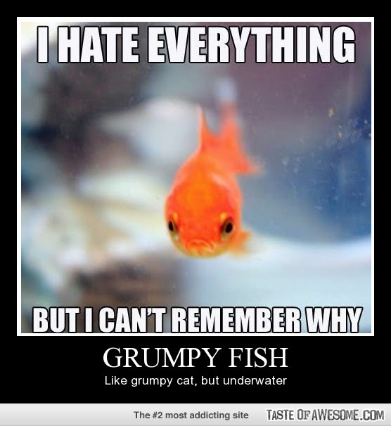 Fishing Quotes And Sayings Funny Fishing Pictures Us Humor Clip