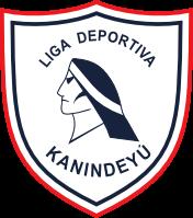 Escudo Liga Deportiva Canindeyú