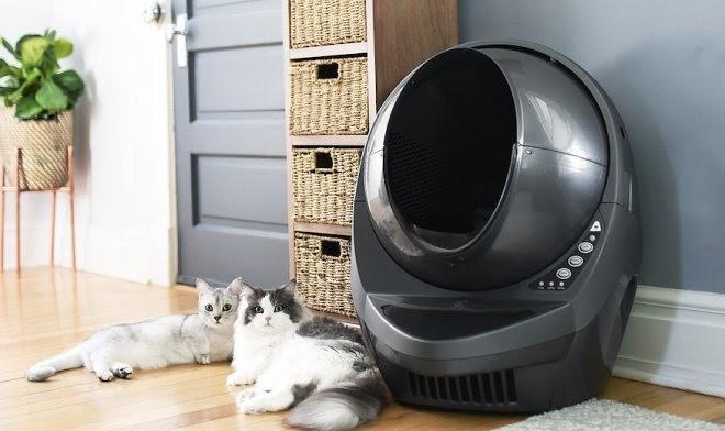Кошачий роботуалет Litter-Robot избавит владельцев животных от неприятных обязанностей