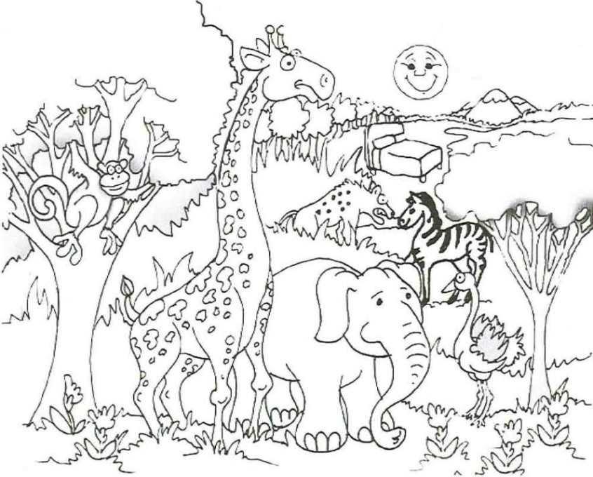 Niedlich Zoo Färbung Fotos - Ideen färben - blsbooks.com