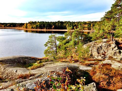 autumn stockholm suburb