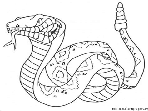 dangerous animals coloring page coloringbay