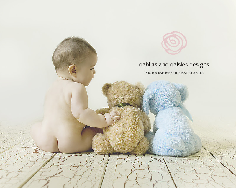 6 Month Old Baby Boy Dallas Baby Photographer Dahlias And Daisies