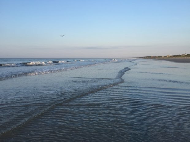 9 Tips for Family Trip to Kiawah