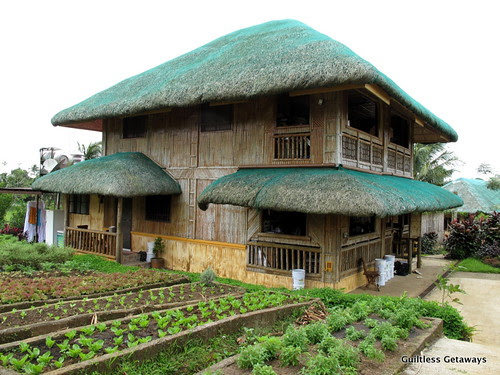 costales-nature-farms-majayjay-laguna.jpg