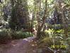 Reid Harbor hiking trail