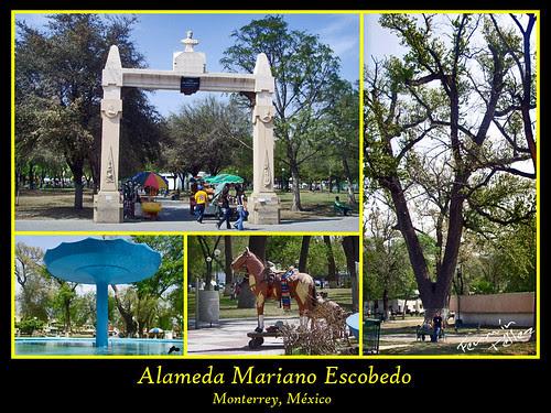 Alameda Mariano Escobedo