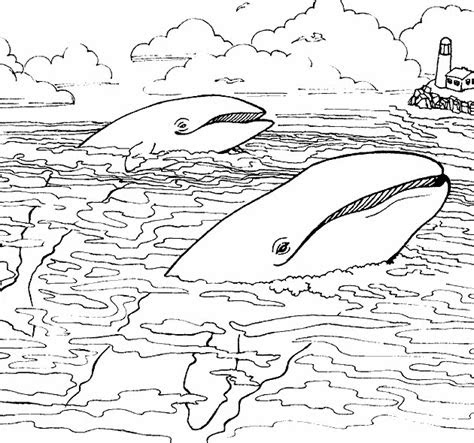 sea animals coloring pages coloringpagescom