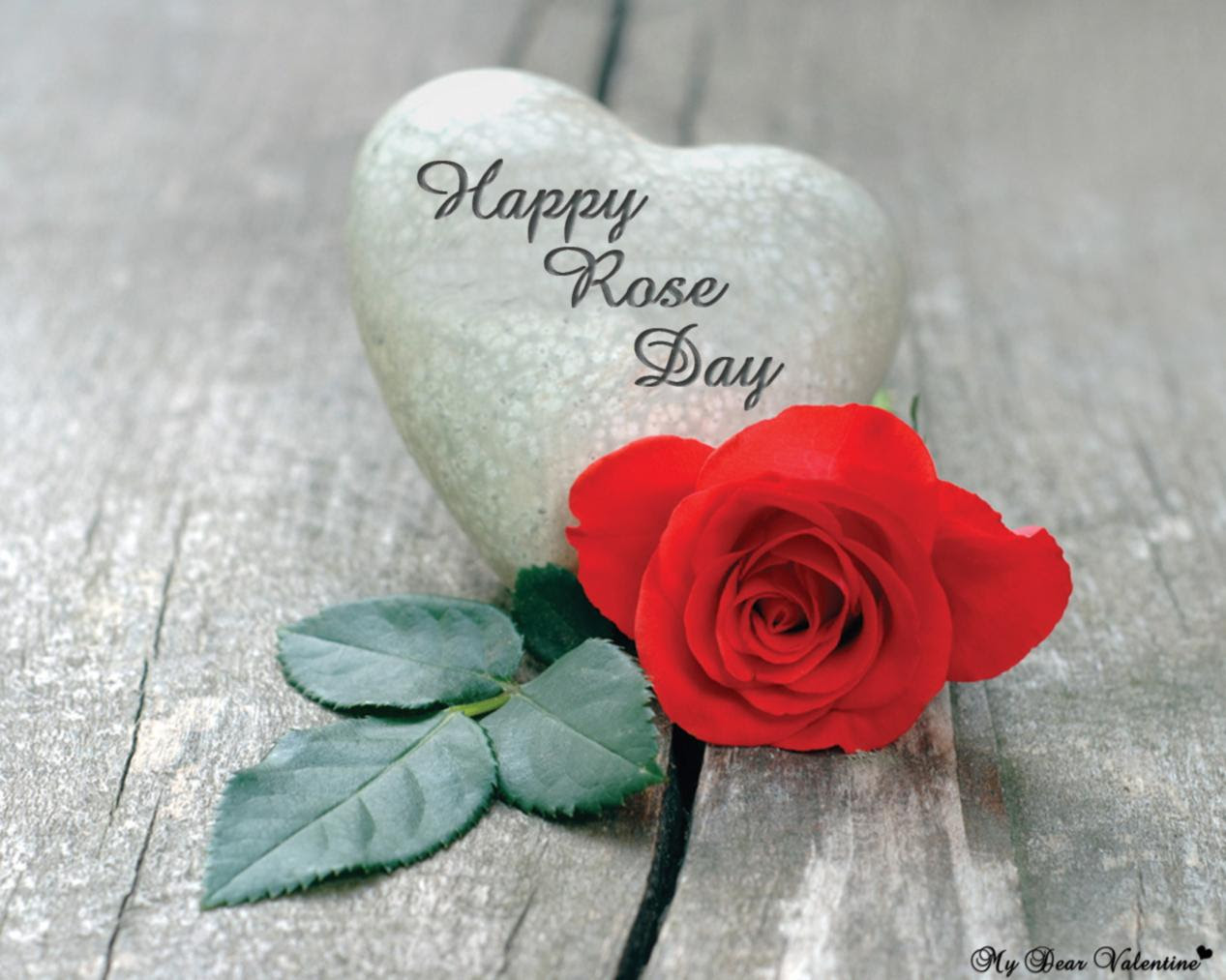 Rose Day Pics Hd Images Status Funny Roses Are Red Poems