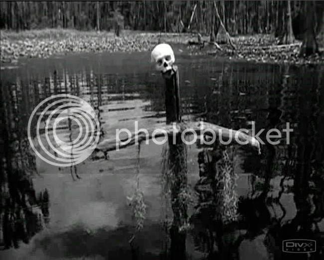 photo swamp_water_01.jpg