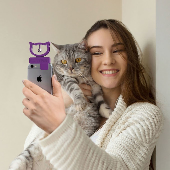 Someone fictitious a tool that may assist you Take The Purrfect Selfie along with your Cat