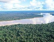 Un tratto del Rio delle Amazzoni