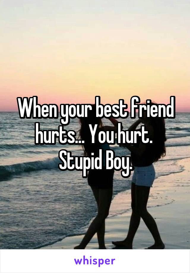When Your Best Friend Hurts You Hurt Stupid Boy
