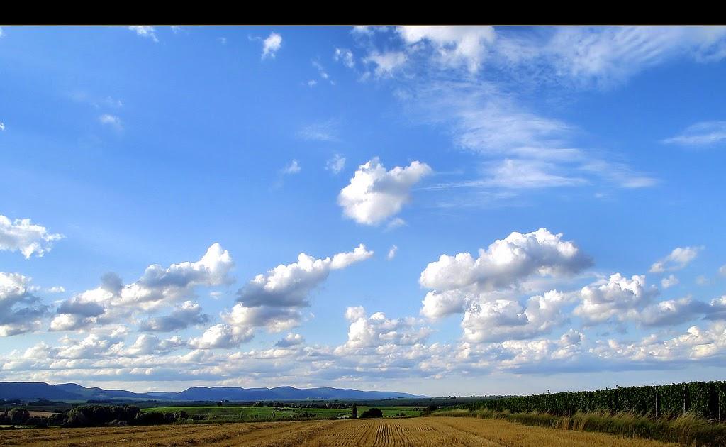 Wallpaper Biru Langit Polos Paimin Gambar