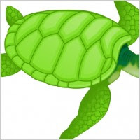 Wood Pro Where To Get Turtle Stool Plans