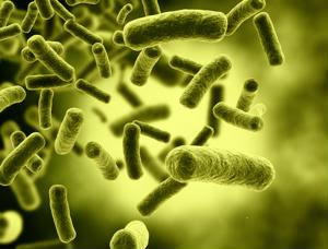 Stopping infection with help from the supply chain