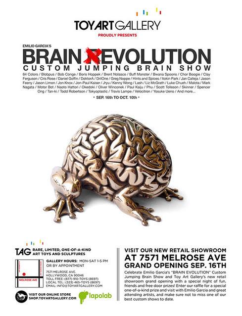 BRAIN EVOLUTION SHOW