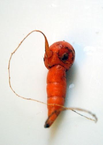Carrot?  Penguin?
