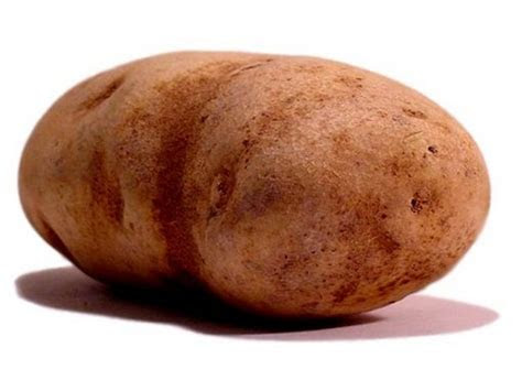 free Potato clipart pictures