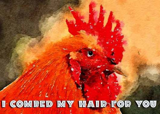 I combed my hair for you and Quillcards