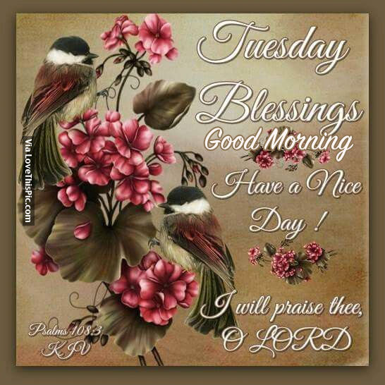 Tuesday Blessings Good Morning Have A Nice Day Pictures Photos