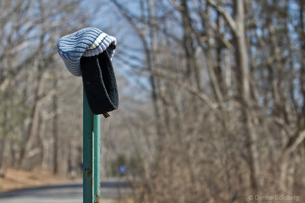 hat, waiting for owner to return