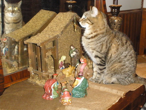 Lucy and the Nativity Set