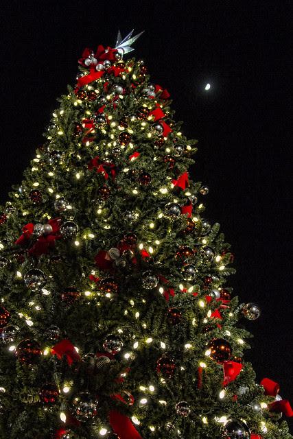 Downey Christmas Tree Lighting