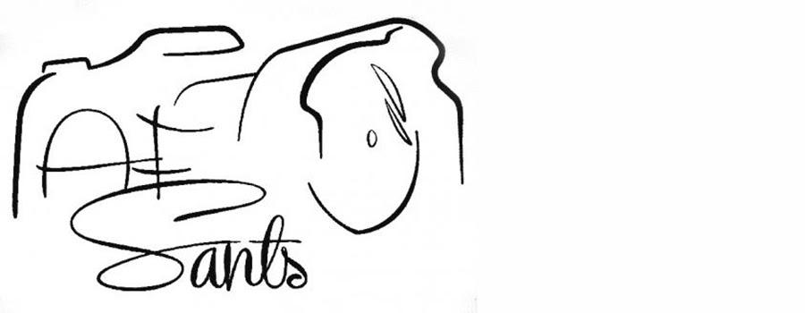 logo www.afosants.cat